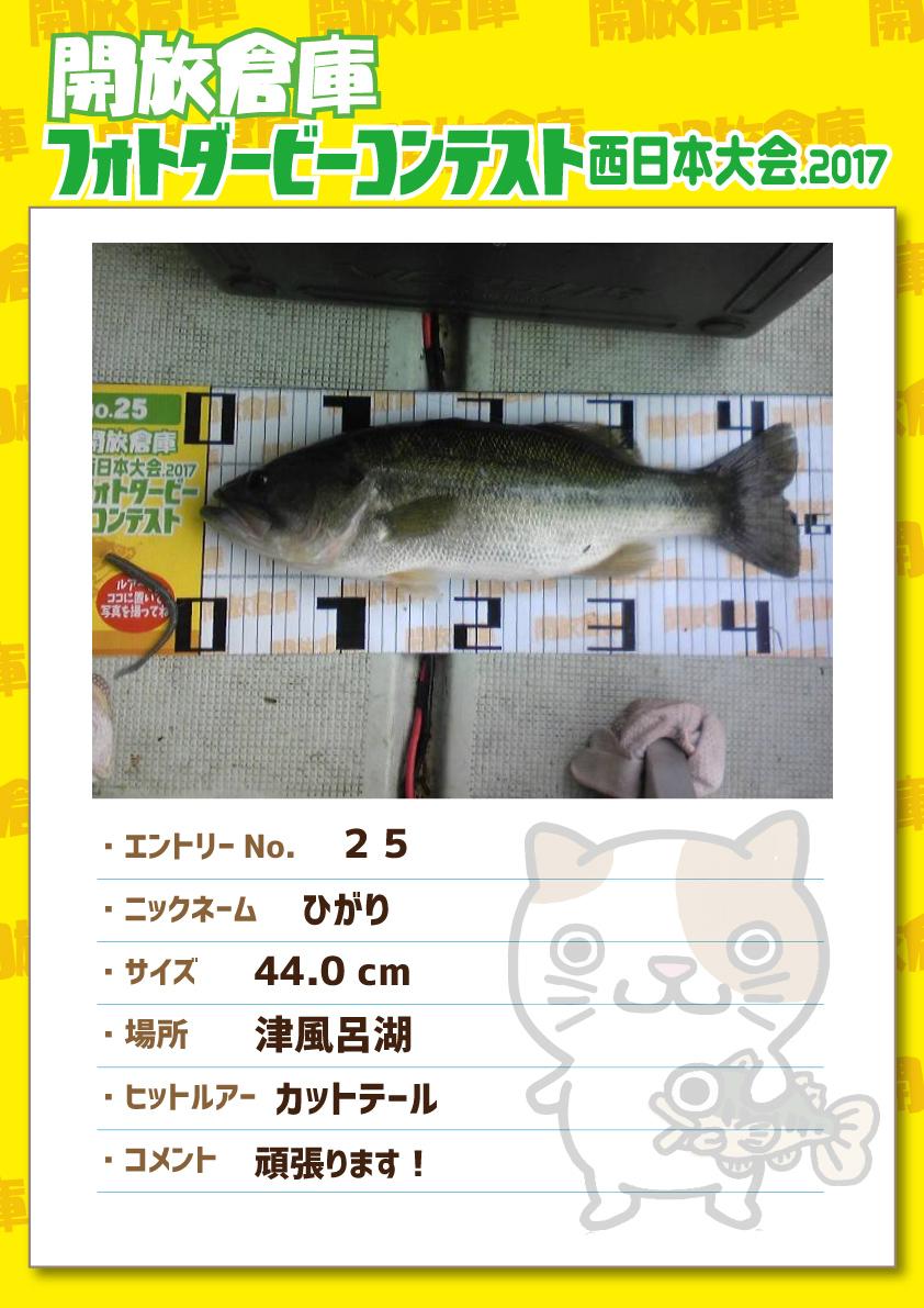 No.025 ひがり 44.0cm 津風呂湖 カットテール 頑張ります!