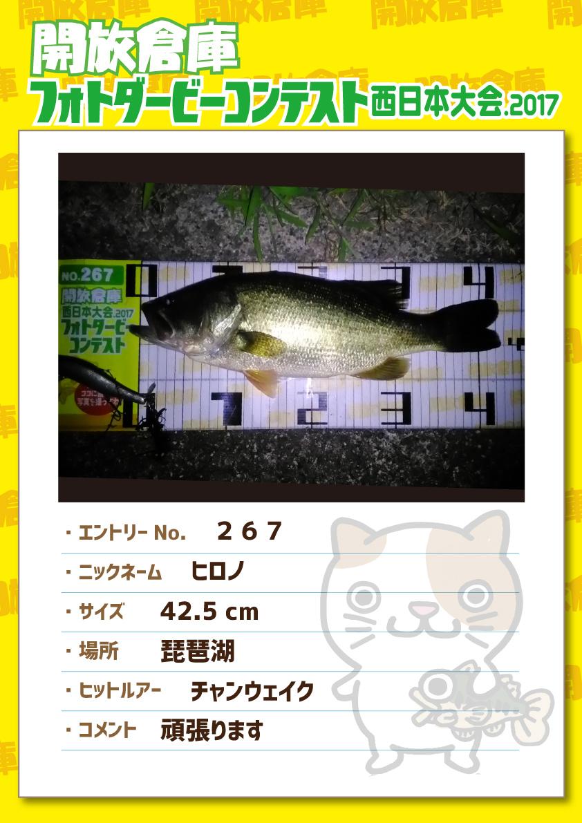 No.267 ヒロノ 42.5cm 琵琶湖 チャンウェイク 頑張ります