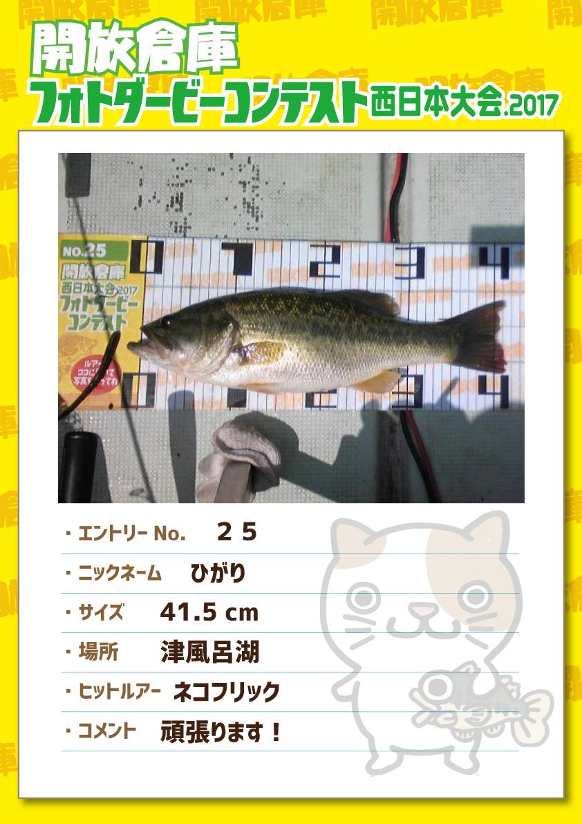 No.025 ひがり 41.5cm 津風呂湖 ネコフリック 頑張ります!
