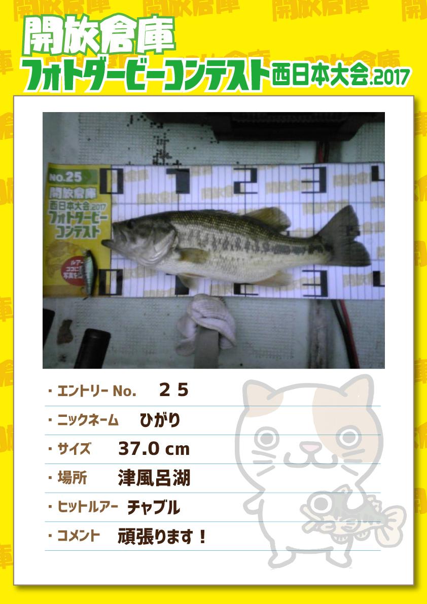 No.025 ひがり 37.0cm 津風呂湖 チャブル 頑張ります!