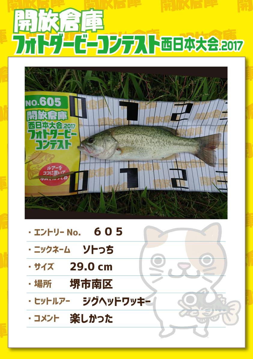 No.605 ソトっち 29.0cm 堺市南区 ジグヘッドワッキー 楽しかった
